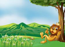 A lion king relaxing at the hilltop. Illustration of a lion king relaxing at the hilltop vector illustration