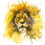 Lion King T-shirt graphics, Lion illustration with splash watercolor textured background. unusual illustration watercolor Lion. King fashion print, poster for royalty free illustration