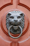 Lion knocker. Detail of old lion knocker Royalty Free Stock Images