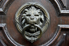 Lion Knocker Stock Photo