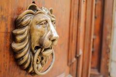 Lion knocker Stock Photography
