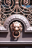 A Lion knocker on a stained door. Stock Images