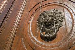 Lion knocker. Wooden front door with a lion knocker Royalty Free Stock Photos