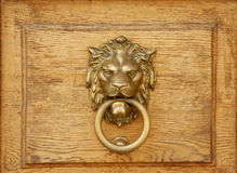Lion knocker. On wooden texture Royalty Free Stock Image