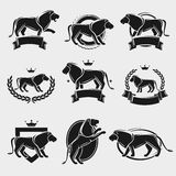 Lion label and icons set. Vector Royalty Free Stock Photos