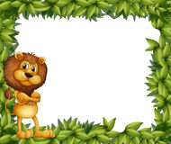 A lion at the left side of a leafy frame Stock Images