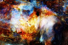 Lion and light cosmic effect. Lion photos and graphic effect. Royalty Free Stock Images
