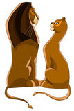 Lion lioness love character cartoon style  illustration Royalty Free Stock Photos