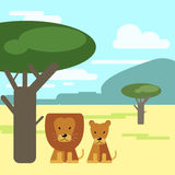 Lion and Lioness sitting under a tree in the savannah . Animals Royalty Free Stock Images