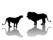 Lion and lionesse Stock Photography