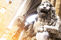 Lion at Loggia dei Lanzi  in Florence Stock Images