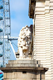 lion  london eye in Stock Images