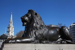 Lion in London's Trafalgar Square Stock Photo