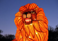 Lion at Longleat. Lion Chinese Lantern at Longleat Festival of Light in UK Stock Photo