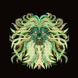 Lion with a lush mane Royalty Free Stock Photography