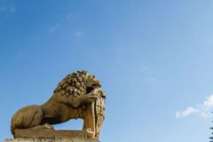 Lion in Malta Stock Photos