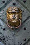Lion Man door knocker. Lion door knocker on a blue wooden door with iron ring similar at face of man Stock Images