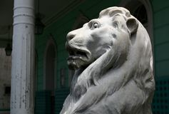 Lion marble statue Stock Photography