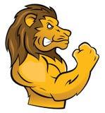 Lion Mascot Photos stock