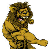 Lion mascot fighting. A tough muscular lion character sports mascot attacking with a punch Royalty Free Stock Photos
