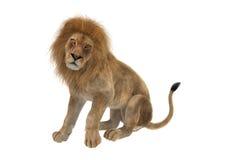 lion masculin du rendu 3D sur le blanc Images libres de droits