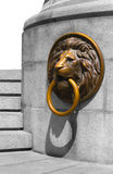 Lion Medalion d'or et en bronze Photographie stock libre de droits