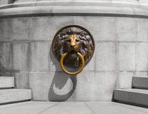 Lion Medalion d'or et en bronze Images stock