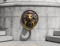 Lion Medalion dorato e bronzeo Immagini Stock