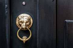 The Lion. A metal lion in a black door Royalty Free Stock Photography