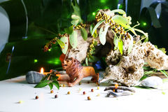 The Lion model. The Lion model, Concept with animals model, drift wood , leaves, seeds, and candles Stock Photo