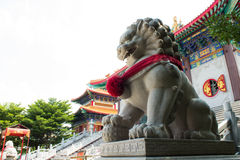 The lion model is security for temple. Lion marble model of the temple Stock Photos