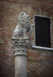 Lion at Montepulciano Royalty Free Stock Photography