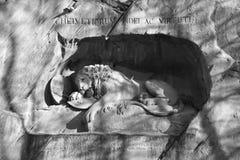 Lion Monument Royalty-vrije Stock Afbeeldingen