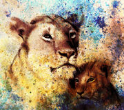 Lion mother and lion cub, painting on paper. with spots abstract background, rust structure and old vintage style Royalty Free Stock Photography