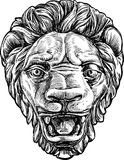 Lion muzzle Royalty Free Stock Photography