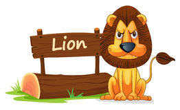 Lion and name plate. Illustration of lion and name plate on a white Royalty Free Stock Image