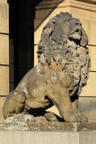 Lion from the Old Prague City, Czech Republic Royalty Free Stock Photos