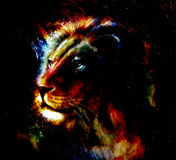 Lion painting on abstract color background. Profile portrait. Stock Photography