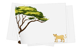 Lion paper template Royalty Free Stock Photos