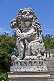 Lion in park of nymphenburg castle Royalty Free Stock Images