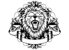 Lion and patterns Stock Photos