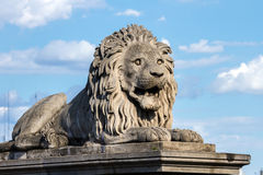 Lion on a pedestal on the support of the bridge in Budapest Royalty Free Stock Photo