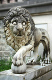 Lion from Peles Castle Stock Photo