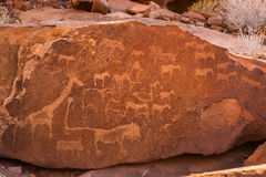 Lion Plate with Lion Man and other bushman prehistoric rock engravings at Twyfelfontein Royalty Free Stock Image