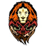 Lion Pop Art Wild Look Royalty Free Stock Photography