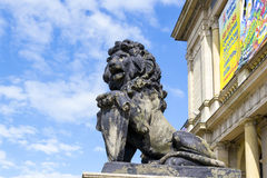 Lion on the porch Stock Photography