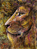 Lion portrait in charcoal and pastel Stock Photos