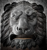 Lion postal box Stock Images