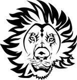 Lion principal Photographie stock libre de droits