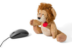 Lion Puppy Plushy with Mouse Royalty Free Stock Images